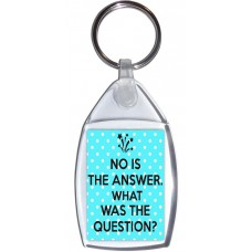 No is the Answer. What was the Question? - Keyring